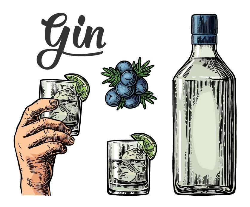 AdobeStock_121401450 [Konvertiert]_Gin Bild gezeichnet